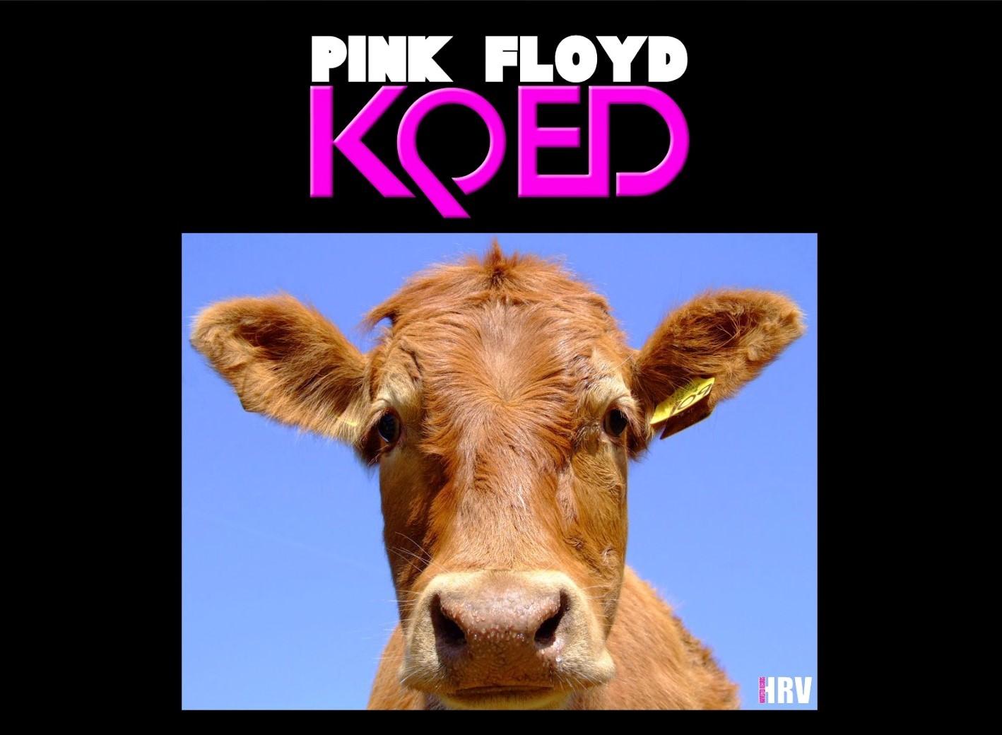 Ďalší staručičký koncert Pink Floyd